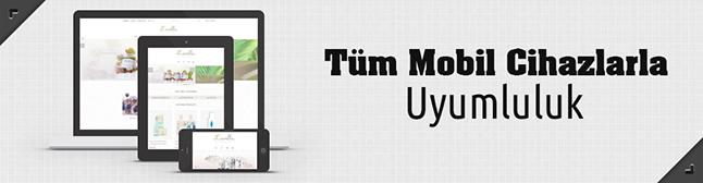 mobil uyumlu e-ticaret