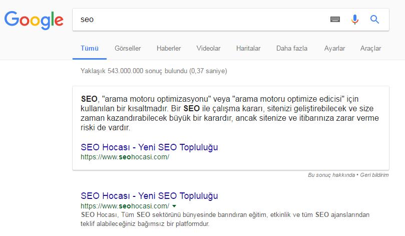 SEO Kelimesi Google Sıralaması