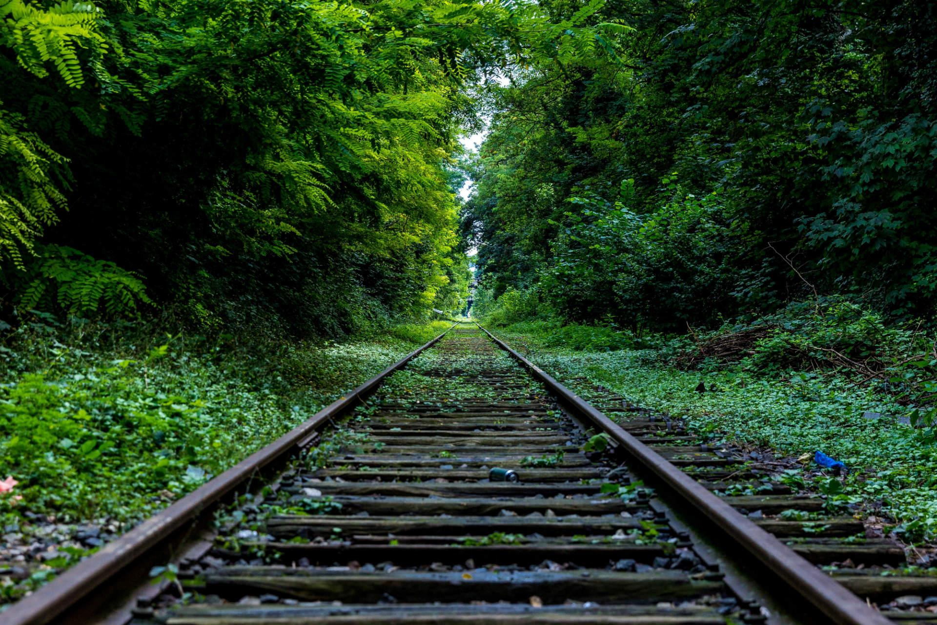 Demir Yolu Yeşillik